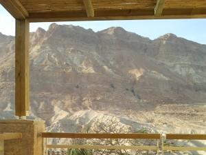 Мертвое Море, заповедник Эйн Геди|escape